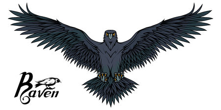 Hand drawn of the raven. Wild birds drawing. Raven icon. Vector graphics to design.