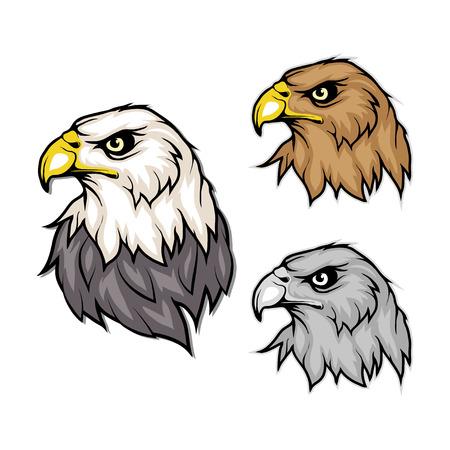 set of eagles. Bald eagle logo. Wild birds drawing. Head of an eagle. Vector graphics to design Vectores