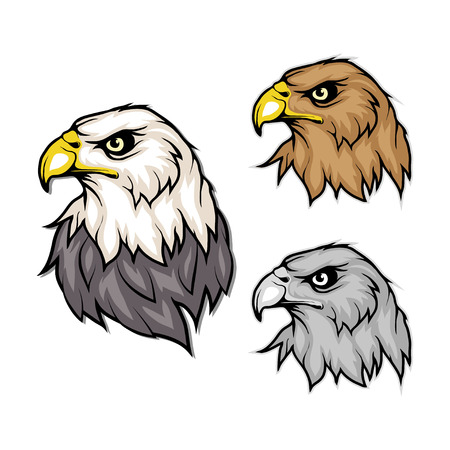 set of eagles. Bald eagle logo. Wild birds drawing. Head of an eagle. Vector graphics to design Illustration