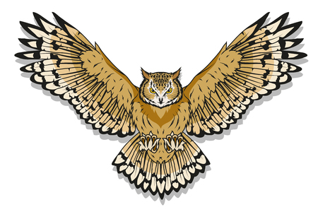Owl logo. Wild birds drawing. Head of an owl. Vector graphics to design Vettoriali