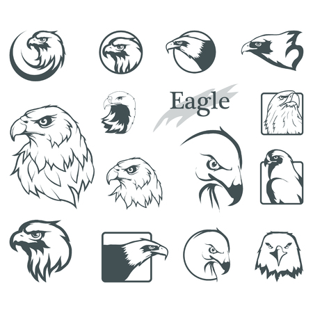 set of eagles. Bald eagle icon. Wild birds drawing. Head of an eagle. Vector graphics to design