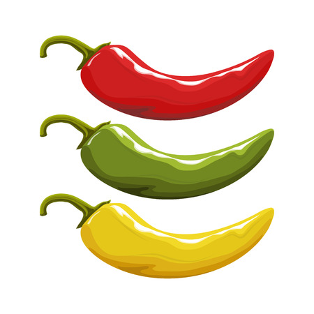 Hand drawn Red hot pepper. Spicy ingredient. Chili . Spice Hot Chili Pepper isolated on white background. Natural healthy food. Vector graphics to design.