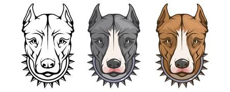 pit bull terrier, american pit bull, pet logo, dog pitbull, colored pets for design, color illustration suitable as logo or team mascot, dog illustration, vector graphics to design. 矢量图像