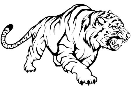 Tigervektorzeichnung, Tigerzeichnungsskizze in vollem Wachstum, kauernder Tiger in Schwarzweiß, Vektorgrafiken zum Designen