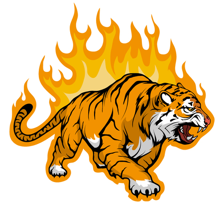 snarling Bengal tiger on fire,Tiger Mascot. vector graphic to design