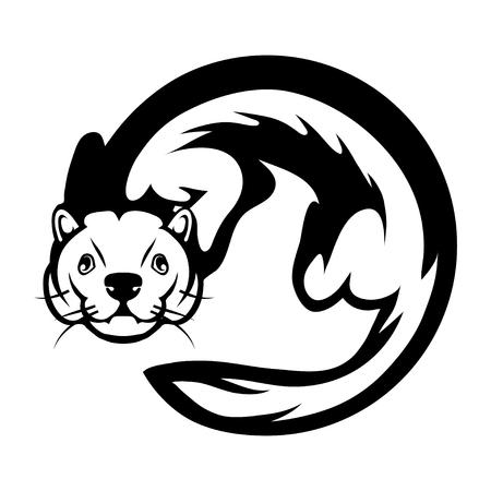 ferret graphic to design