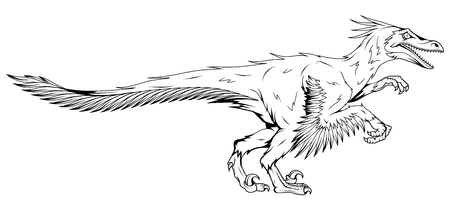 eathers prehistoric animals, vector graphic to design
