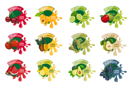 Splash with fruits. Healthy food. Different types of delicious natural fruits and berries. Different kind of tropical healthy fruits. Vector graphics to design