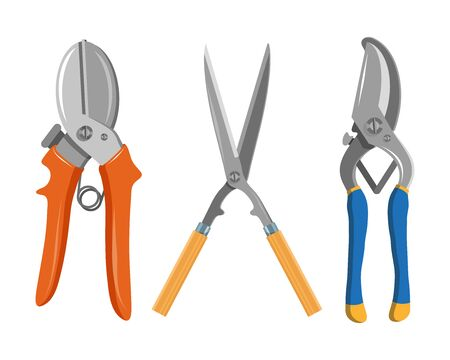 Set of Different garden shears and pruners. Vector Graphics to Design.