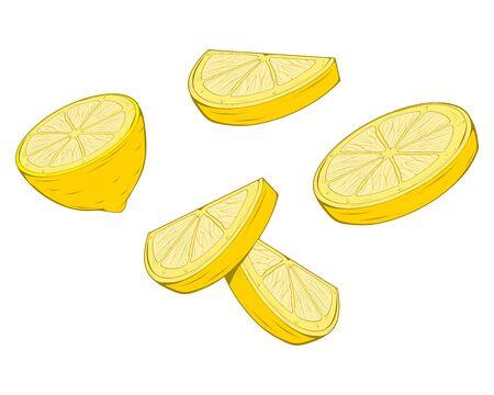 Lemon. Raw Lemon . Fresh Lemon Fruit. Yellow Fruit for Juice. Fresh Natural Juice Fruit. Raw Food Diet. Fresh Natural Vegan Product. Green Grocer Food. Healthy Food. Vector graphics to design.
