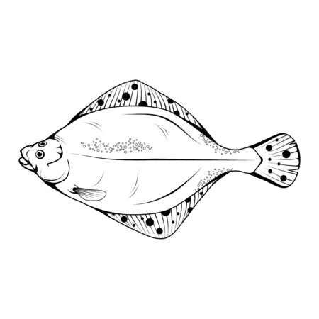 Hand Drawn Flounder. Sea Food. Flounder. Sea Fish.Tasty Seafood. Ocean Sport Fishing. Fresh Seafood Product. Delicious Flounder. Fish Meal Diet. Big Best Flounder. Fishing. Vector graphics to design.