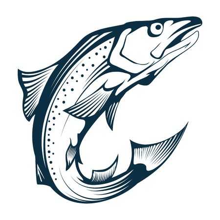Salmon Fish. Hand Drawn Sketch Salmon on white background. Whole Atlantic Salmon. Sea Fish. Fresh Whole Alaskan King Salmon. Fresh Norwegian Fish. Vector graphics to design.