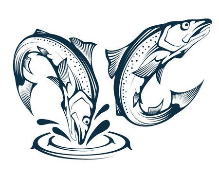 Jumping Salmon Fish. Illustration of an Atlantic Salmon. Jumping Fish. Alaskan King Salmon. Sea Fish. Vector graphics to design. 일러스트