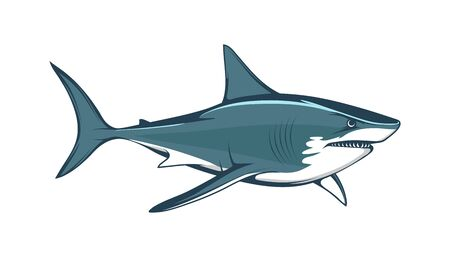 White shark. Saltwater fish. Eater Shark. Carcharodon. Big aggressive shark. Fish a shark a side view sketch. The emblem with shark for a sport team. Angry color shark vector illustration.
