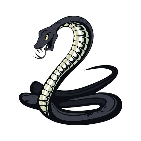 Black Mamba. Teeth bared, ready to strike. Black snake vector illustration. poisonous snake common in Africa. Black coloring of the internal cavity of the mouth.
