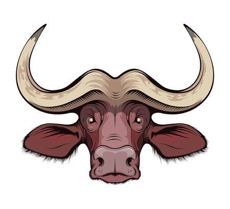 African buffalo. Cape Buffalo. hunting sport open season. Black bull of cape buffalo or desert buffalo with large horns for safari tour, sketch tattoo, mascot, logo, t-shirt or hunter club symbol