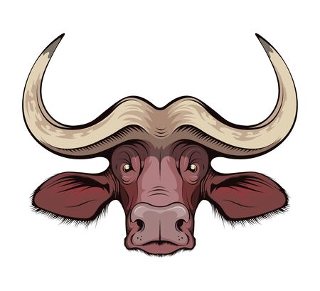African buffalo. Cape Buffalo. hunting sport open season. Black bull of cape buffalo or desert buffalo with large horns for safari tour, sketch tattoo, mascot, logo, t-shirt or hunter club symbol