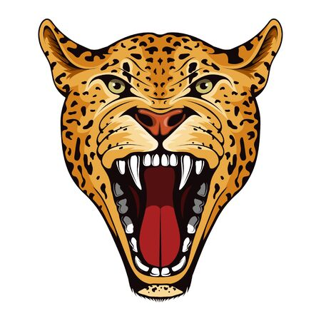 Jaguar, panther, American tiger. Panther with angry face expression. Jaguar head mascot logo. Jaguar Mascot Color Logo. panther Tattoo. Angry animal sports mascot. leopard skin pattern. Wild cats