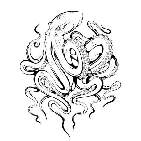 Octopus. Poulpe, devilfish. Seafood illustration. Tentacles of an octopus.