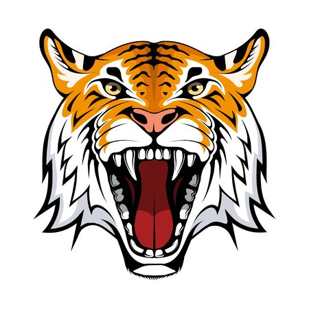 Angry tiger face, isolated on white background, suitable as  team mascot. Bengal Tiger. Predator animal.