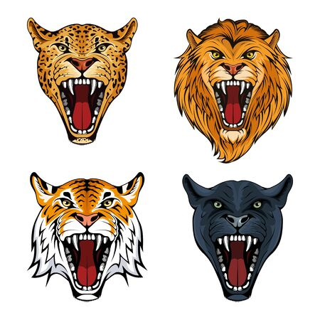 Predatory animals set. Leopard. Lion. Tiger. Panther. Wild animals collection. Beast set. Angry animals collection. Modern vector illustration for web and mobile. Vector graphics to design.