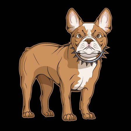 Illustration of a french bulldog. Dog for tattoo or t-shirt print. French puppy illustration for a sport team. Vector character.  イラスト・ベクター素材