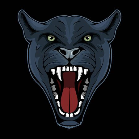 Vector illustration of a Panther. Leopard for tattoo or t-shirt print. Cougar illustration for a sport team. Vector character.  Jaguar on black background