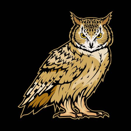 Vector illustration of a owl. Wild animal for tattoo or t-shirt print. Bird illustration for a sport team. Vector character.   Owl on black background Ilustração