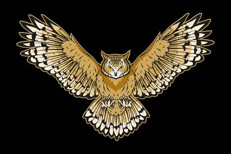 Vector illustration of a owl. Wild bird for tattoo or t-shirt print. Bird illustration for a sport team. Vector character.  Owl on black background