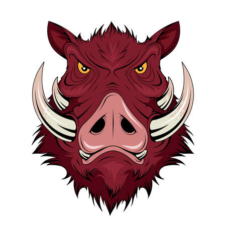 Wild Boar Head. Pig. Boars Head Logo. Sketch for mascot, logo or symbol. Hog or boar mascot. Vector graphics to design Ilustração
