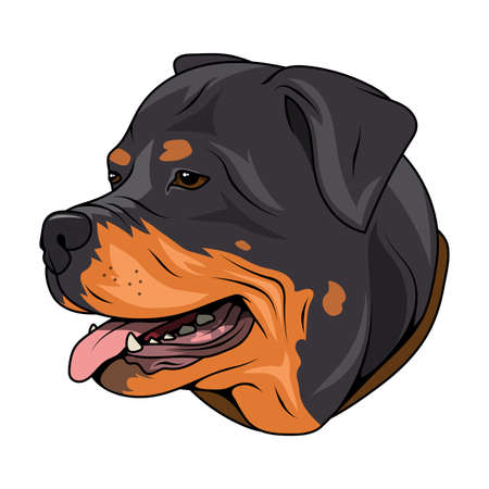 Rottweiler. Butcher's Dog. Best friend. Champion dog. Rottweiler Logo. Vector graphics to design