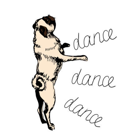 Cute funny pug stands on your hind legs and dances. Cartoon character isolated on a white background. For printing kids stikers, cards. Can be used as mascot