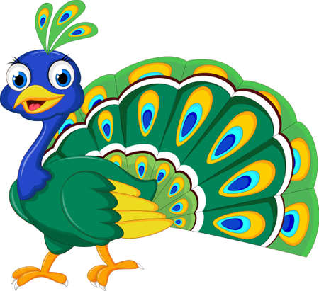 peacock feathers: Peacock cartoon for you design