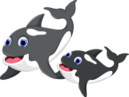 Killer whale and her son Illustration