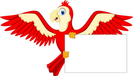macaw: Cute cartoon macaw with blank sign