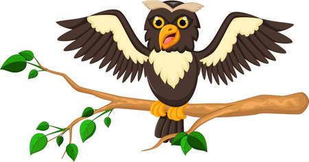 head wise: Cute owl cartoon for you desing