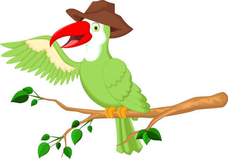 guacamaya caricatura: Macaw lindo del dibujo animado Vectores