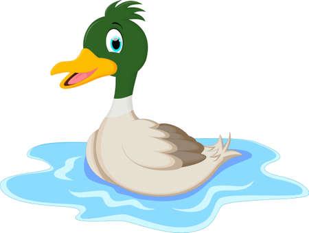 squeak: Cartoon ducks on water