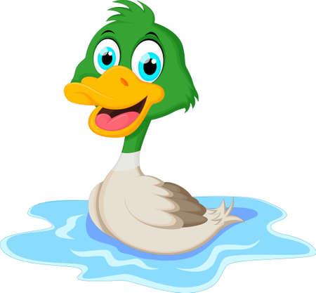 Cartoon ducks floats on water Illustration