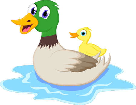 squeak: Cartoon funny mother duck with baby duck floats on water
