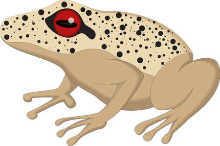 businessman jumping: Frog cartoon for you design