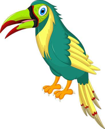 macaw: Cartoon parrots bird and parrot wild animal bird. Tropical parrot feather zoo birds tropical fauna macaw flying ara. Various cartoon exotic bird with parrots illustration vector
