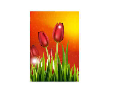 background with colorful flowers illustration.
