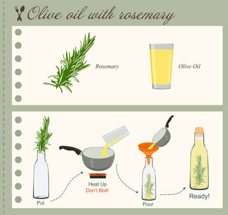 rosemary: Recipe of Olive Oil with Rosemary Illustration