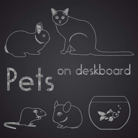 domestic animal: Different pets drawn on chalkboard. Part 2