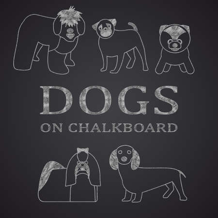 bobtail: Different dogs drawn on chalkboard. Part 1