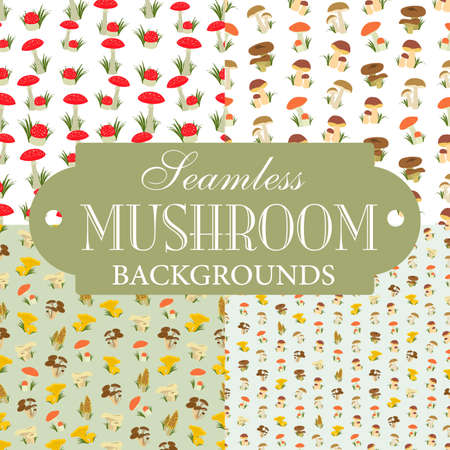 a fly agaric: Collection of seamless backgrounds on the topic of mushrooms