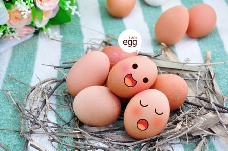 Eggs in Expression Face On nest and Colorful Background