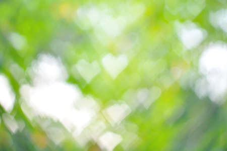 colorful heart bokeh background, Natural Background photo