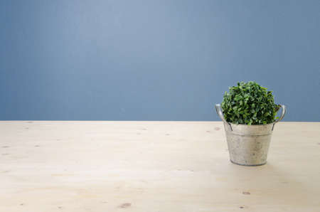 table surface: Office table with green tree on basket,  View from front with Green Leaf.